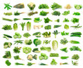 Vegetables Collection  On White Background Royalty Free Stock Photography - 36090057