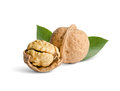 Walnuts Royalty Free Stock Photography - 36093597