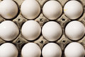 A Carton Of White Eggs  Stock Image - 36149631