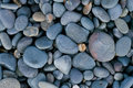 Pebbles Royalty Free Stock Images - 3625999
