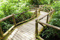 Wood Bridge Royalty Free Stock Photo - 36253245