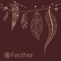 Background With Decorative Feathers Royalty Free Stock Photography - 36272507