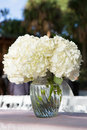 White Flowers In Glass Vase Royalty Free Stock Photo - 36297145