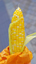 Sweet Corn Snack Stock Images - 36297674