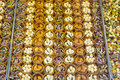 Pistacia Sweets In Round Shapes Stock Photos - 36319173