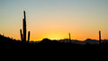 Sunset Over Saguaro National Park Stock Images - 36374074