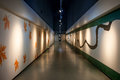 Art Corridor In Exhibition Hall Stock Images - 36375414