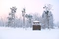 Oriental Arbour Covered In Deep Snow And Tall Trees Stock Photos - 36395553