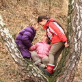 Three Kids - Girls Leaning And Playing On Tree Stock Photo - 36443070