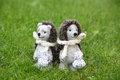 Two Cute Hedgehog Toys In The Park Royalty Free Stock Photography - 36443637