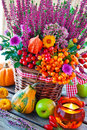 Autumn Decorations Stock Photo - 36471520