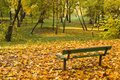 Park Bench With Autumn Leaves Royalty Free Stock Photos - 3657288