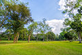Trees And Grass Field With Sky And Cloud Stock Images - 36526244