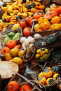 Composition Of Pumpkins And Summer And Winter Squashes Stock Photo - 36553100