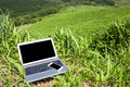 Laptop And Smart Phone Stock Photo - 36627220
