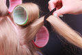 Female Blond Hair Head Curlers Rollers Hairdresser Beauty Salon Royalty Free Stock Photography - 36647367
