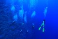 Group Of Scuba Divers Stock Images - 36670824