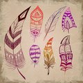 Set Of Decorative Feathers Stock Photos - 36754553