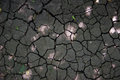 Cracked Earth Texture Royalty Free Stock Photo - 36781715