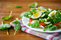 Summer Salad With Egg Royalty Free Stock Image - 36785956