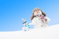 Happy Winter Snowmen Family Or Friends Against Blue Sky Stock Images - 36788344
