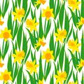 Vintage Floral Pattern With Daffodils. Stock Image - 36890481