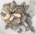 Blooming Decorative Rose, Hand-drawing. Vector Illustration. Royalty Free Stock Photos - 36890648
