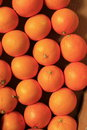 Oranges Royalty Free Stock Photography - 36937897