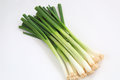Spring Onions Stock Image - 36958661