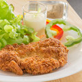 Deep Fried Breaded Pork Rice With Salad Stock Image - 37017001