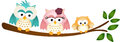 Happy Owl Family On Tree Branch Royalty Free Stock Photography - 37037387