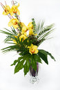 Orchids In The Vase Stock Image - 3712851