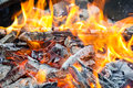 Camp Fire Royalty Free Stock Images - 37102429