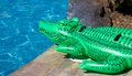 Inflatable Crocodile Royalty Free Stock Photography - 37170307