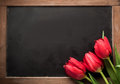 Three Red Tulips On A Vintage School Slate Stock Photos - 37196683