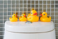 Rubber Ducks Royalty Free Stock Photography - 37204467
