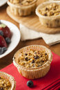 Homemade Breakfast Oatmeal Muffins Stock Images - 37242314