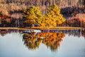 Fall Trees Stock Photography - 37408242