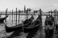 Venice Lagoon Royalty Free Stock Images - 37411089