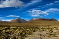 Desert And Mountain Over Blue Sky And White Clouds On Altiplano,Bolivia Stock Photography - 37414152