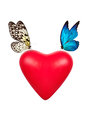 Red Valentine Heart With Butterfly Stock Photo - 37437000