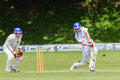 Cricket Action Sport Stock Photo - 37461560