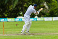 Cricket Action Sport Royalty Free Stock Image - 37464466