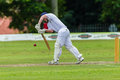 Cricket Action Sport Royalty Free Stock Images - 37464639