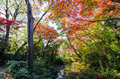 Japanese Garden In Autumn Royalty Free Stock Photography - 37513827