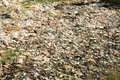 Plastic And Trash Pollution Royalty Free Stock Photography - 37547207