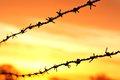 Barbed Wire At Sunrise Stock Photos - 37578773