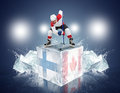 Finland - Canada Game. Face-off Player On The Ice Cube. Stock Image - 37602241