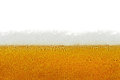 Beer, Foam, Bubbles Isolated On White Background Royalty Free Stock Image - 37608176