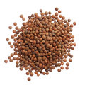 Uncooked Lentils Isolated On White Background Royalty Free Stock Photos - 37618098